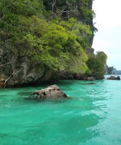 Phi Phi Island Day Tour by Speed Boat
