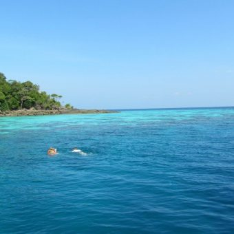 Surin Island Day Tour 10