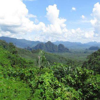 Khao Sok Lake Tour 2 Days 1 Night View Point