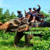 elephant trekking phuket adventure fun