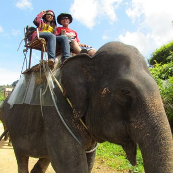 surin island and khao sok lake 3 day 2 night khao sok lake enjoy elephant trekking
