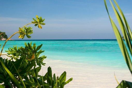 surin similan islands 2 day 1 night nice talay