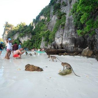 Phi Phi Sun Rise Premium Phi Phi Morning Monkey Beach