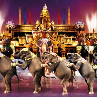 Phuket FantaSea Show Only Gold Seats Transfer Elephant Show